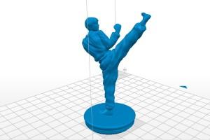 Taekwondo keychain print